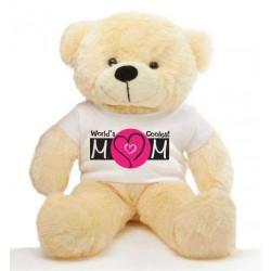Mom Message Teddy Bears
