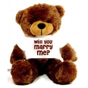 Will You Marry Me Message Teddy Bears (6)