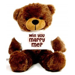 Will You Marry Me Message Teddy Bears