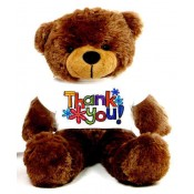 Thank You Message Teddy Bears (0)
