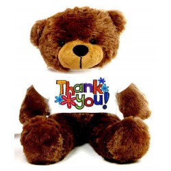 Thank You Message Teddy Bears