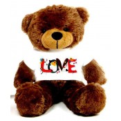 Love Message Teddy Bears (33)