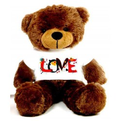 Love Message Teddy Bears