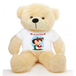 I AM Sorry Message Teddy Bears