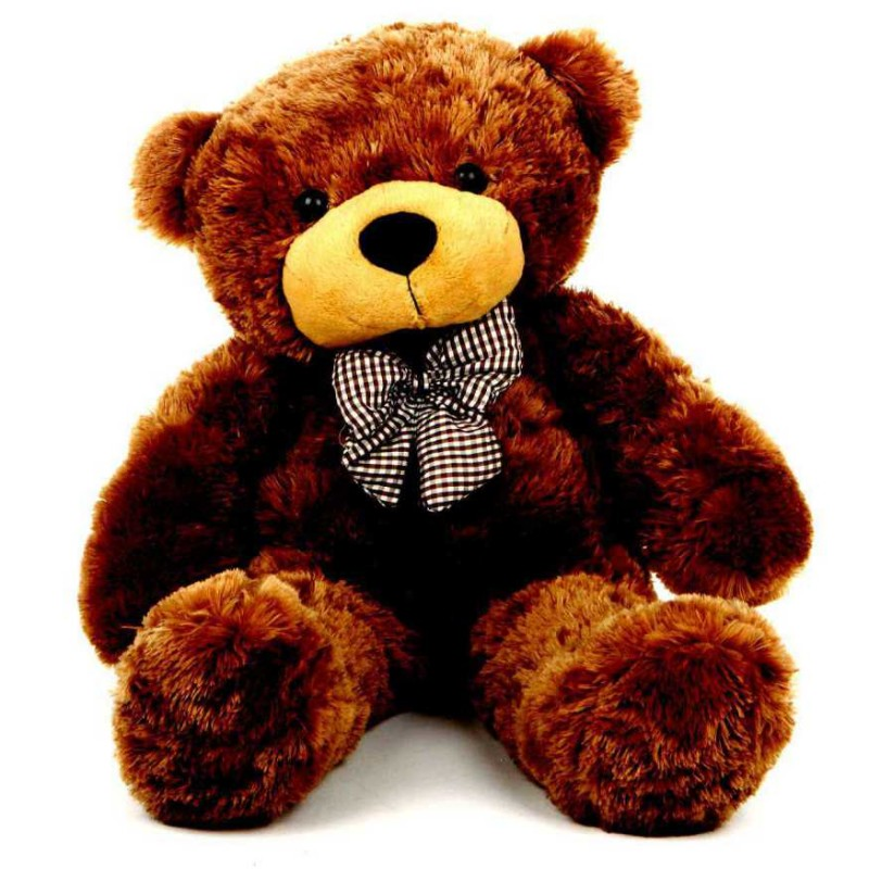 Buy 2 Feet Brown Teddy Bear with a Bow Online at Lowest ...