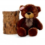 2.5 Feet Brown Big Teddy Bear with a Bow