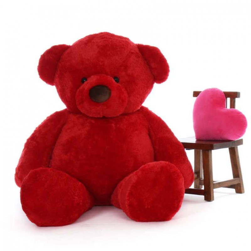 buy 6 feet fat and huge red teddy bear online at lowest price in