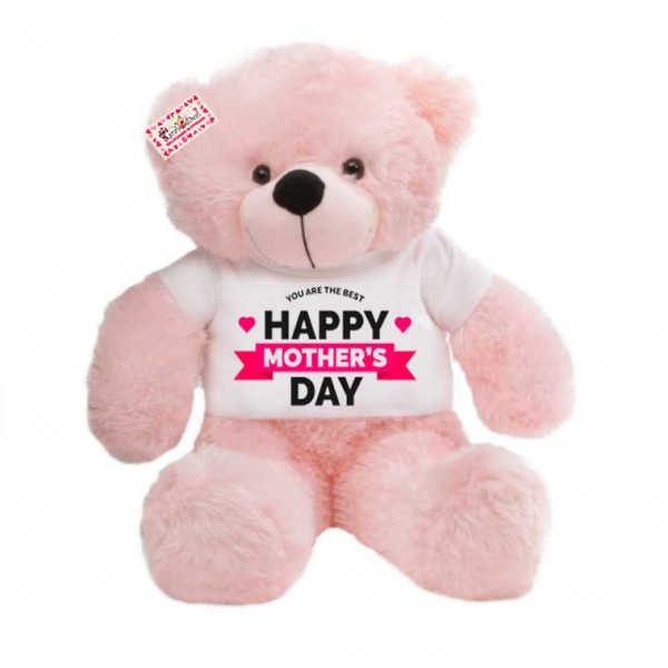 2 feet big pink teddy bear wearing YOU ARE THE BEST Happy Mothers Day T-shirt