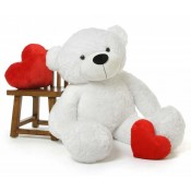 Personalized Teddy Bears (13)