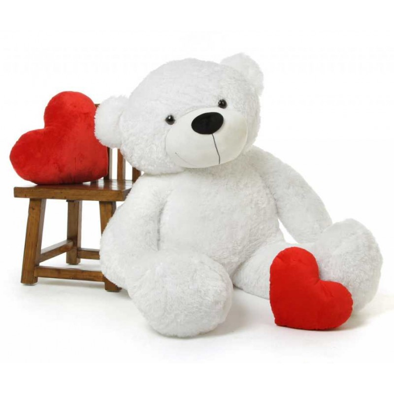 54f9fdbeb5dfb Buy Customized and Personalized Teddy Bear Soft Toy in INDIA Online at  Lowest Price in India