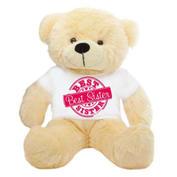 2 feet big peach teddy bear wearing special Best Sister T-shirt
