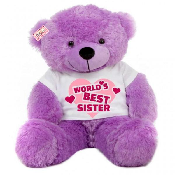 2 feet big purple teddy bear wearing worlds best sister T-shirt