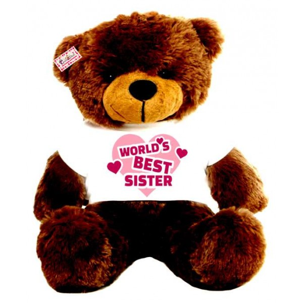 2 feet big brown teddy bear wearing Worlds Best Sister T-shirt