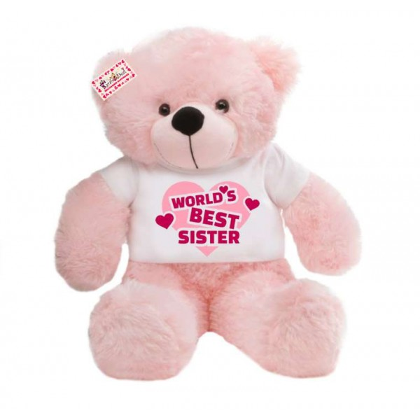 2 feet big pink teddy bear wearing Worlds Best Sister T-shirt