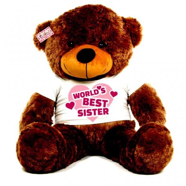 3.5 feet big brown teddy bear wearing Worlds Best Sister T-shirt
