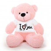 I Love You T-shirt Teddy Bears (15)